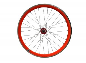 Rear Fixed Wheel (Novatec Hub)